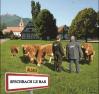 Bernard Sturm de Sabreco raconte son passionnant projet « Goutez l'Alsace »